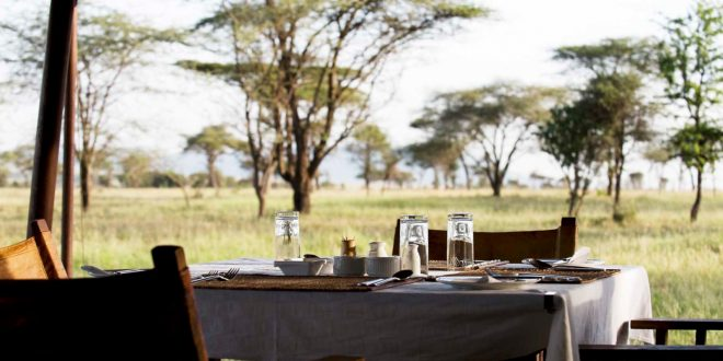 Accomodation in Ndutu area January to March