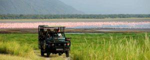 3 Days Manyara-Tarangire-Ngorongoro