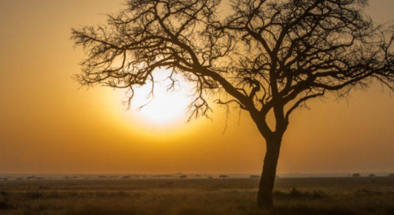 Tanzania Weather and Climate | Safari & Tours