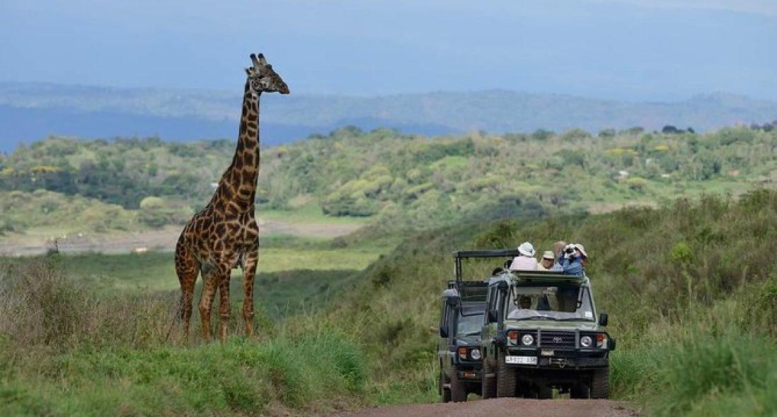 Arusha Safari Tours I 2021 Tanzania Safari