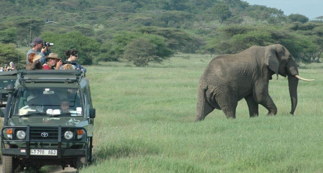 Mbeya Safari tours I 2021 Tanzania Safaris
