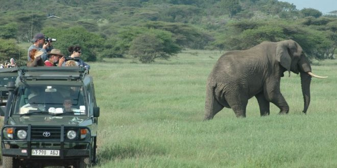 Mbeya Safari tours