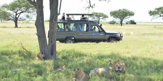 Mwanza Safari Tours