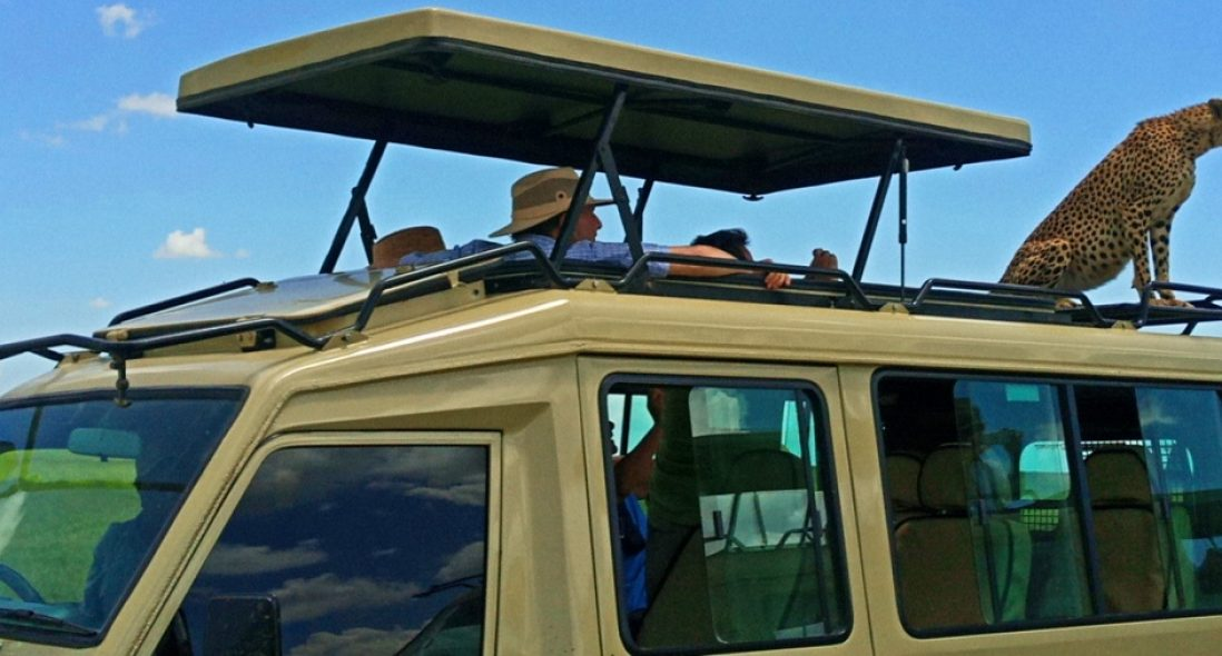 Tanzania Safari tours I 2021 Safari tours
