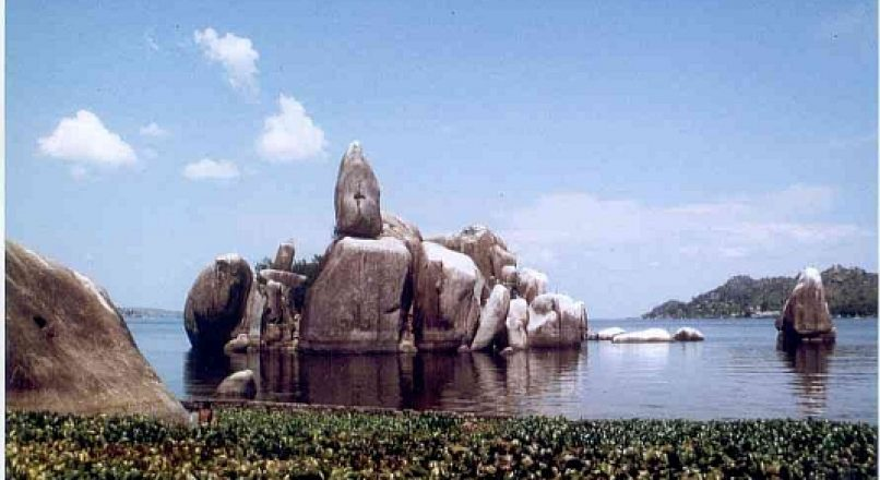 An Expat's guide to Mwanza