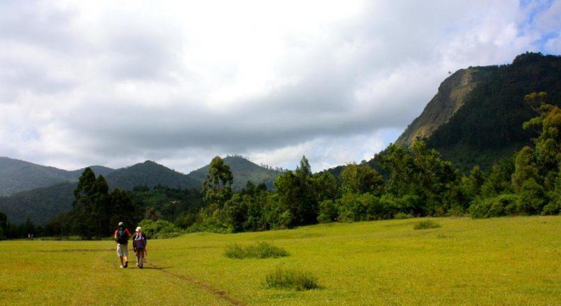 Usambara Mountains I Tanga Tours
