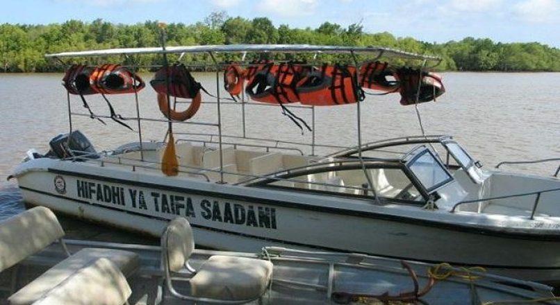 Best Saadani Safari tours