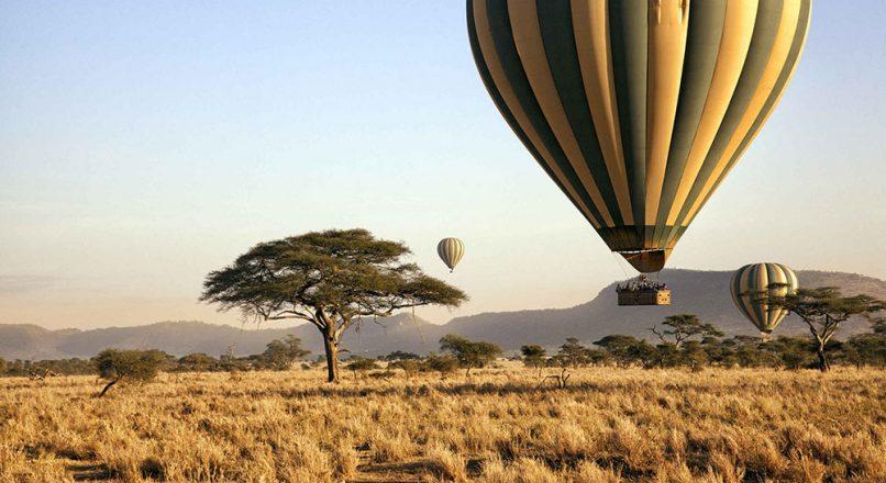 Best Safari tours from Mwanza