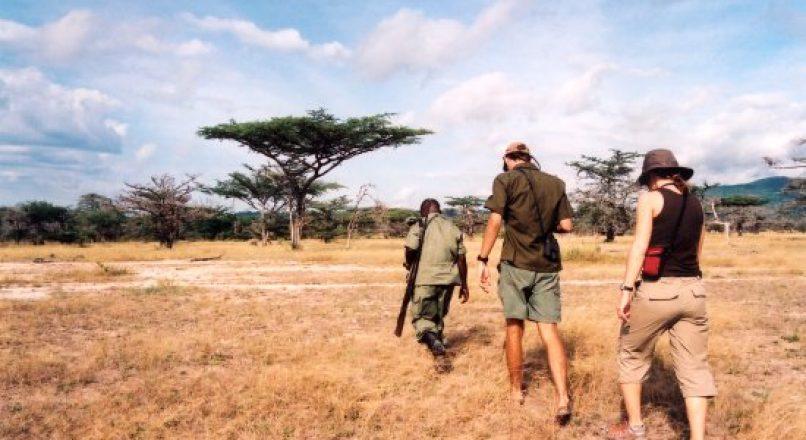 Tanzania walking and birding Safaris