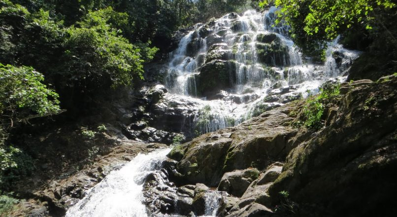Udzungwa Mountains I Tanzania Guide