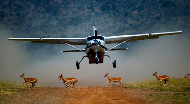 Northern Tanzania flying Safari